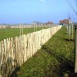 Cloture, bois et sécurisation d'espaces